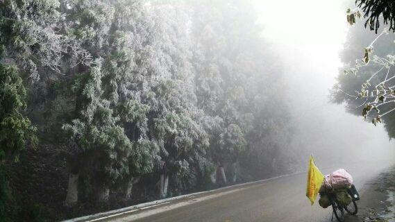 湖北的雾凇。