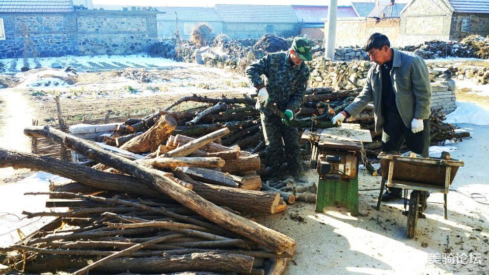 这么多木头,任务艰巨!